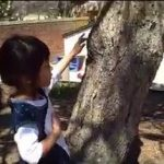 Exploring Trees on the Playground