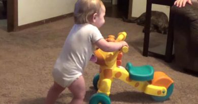 toddler with trike