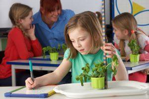 child measuring a plant