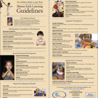 Guidelines Poster